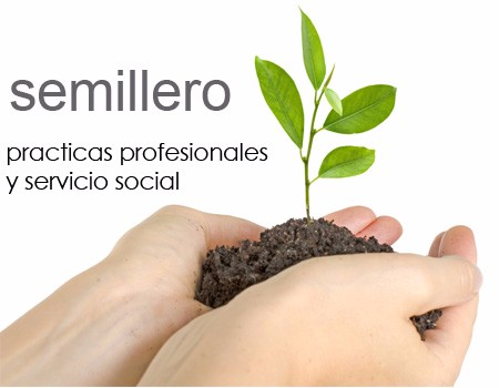 practicas-y-servicio-social-Gimmick
