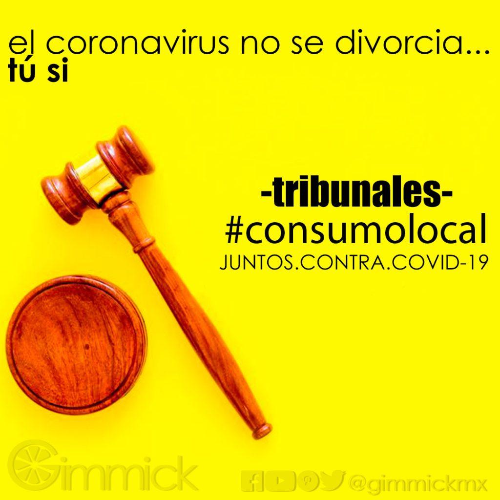 consumo local tribunales