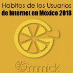 Habitos de los Usuarios de Internet en México 2018