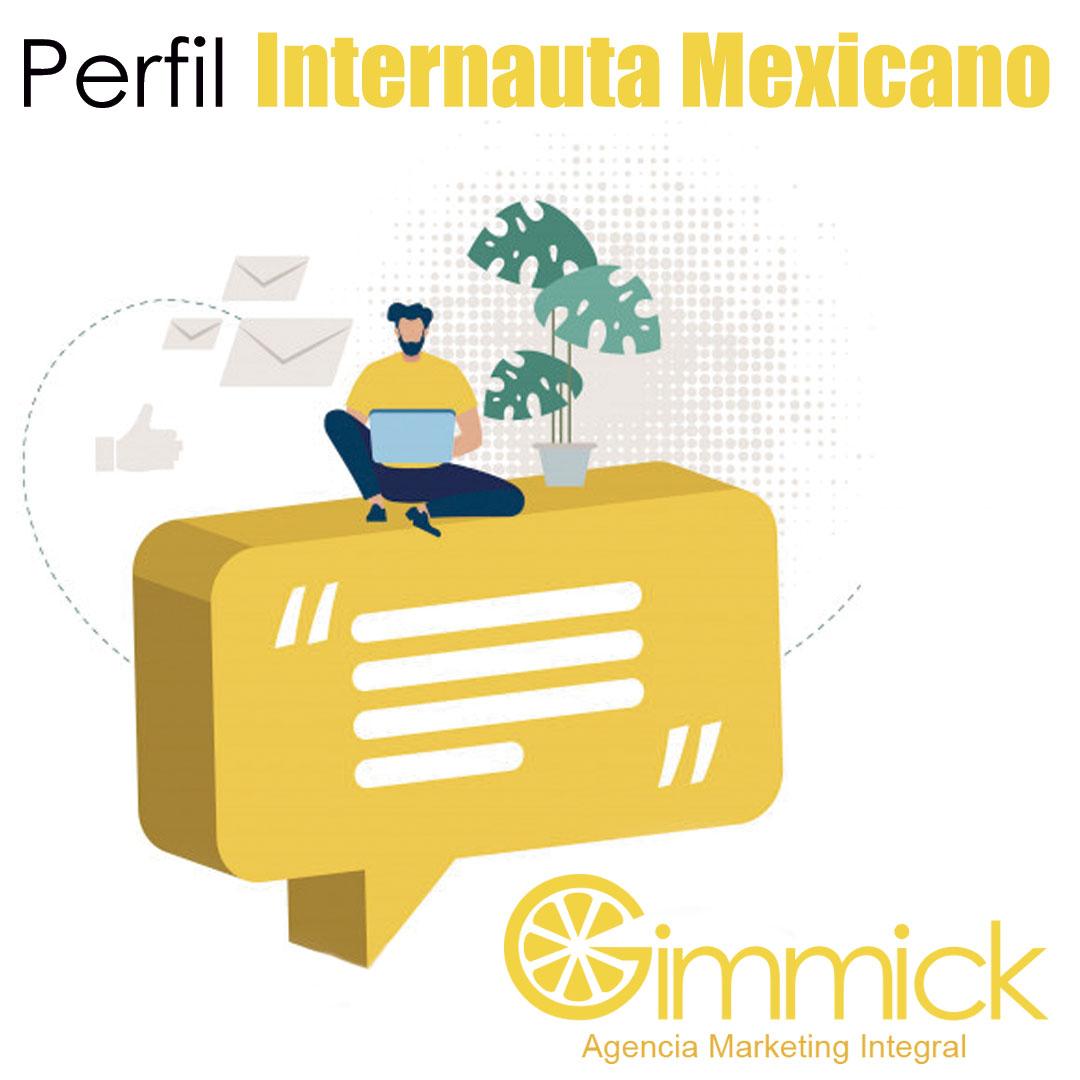 Perfil Internauta Mexicano