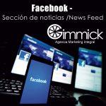 Facebook – Seccion de noticias /News Feed